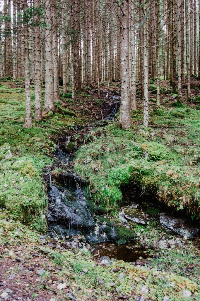 Norweskie szlaki