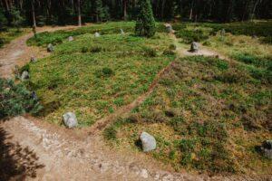 Kamienne Kręgi w Odrach. Odwiedzamy ślady po dawnych plemionach!